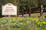 Julian Homes for Sale