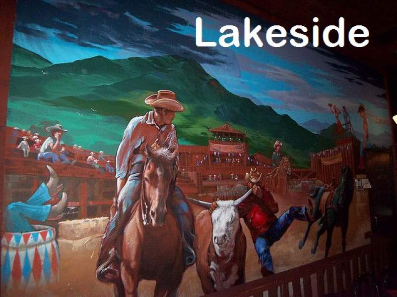 Lakeside Homes for Sale